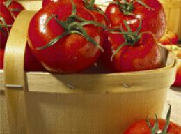 Tomatoes: Ripe, Red and Full of Nutrition