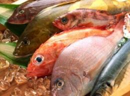 How to buy fresh fish?